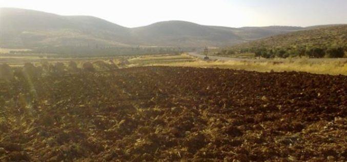 مستوطنو مستوطنة عادي عاد يحرقون 40 دونما في قرية المغير في محافظة  رام الله