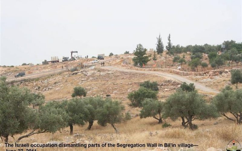 """""""The Triumph of Bil'in"""" The Israeli Segregation Wall crumples before the Palestinian Popular Non-Violent Resistance"""