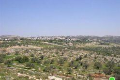 الاحتلال الإسرائيلي يحرق عشرات الدونمات الزراعية في قرية بلعين – محافظة رام اللة