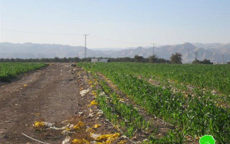 إخطار منشأتين  بوقف البناء و الإخلاء في دير أبو حجلة والزور- محافظة أريحا