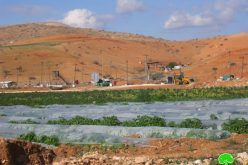 The Demolition of a Brux, an Agricultural Room and a Water Network in Al Hamra Area – Tubas Governorate