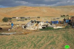 Demolishing Three Structures in Humsa- Tubas governorate
