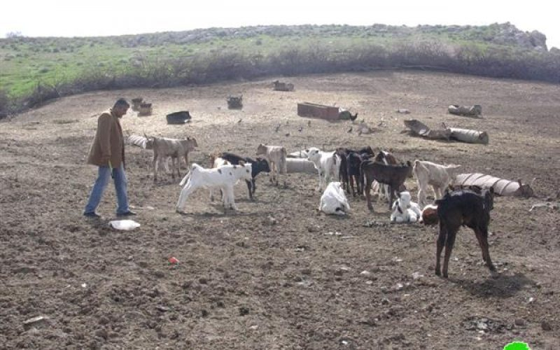 إخطار خمسة مزارعين بإخلاء أراضيهم الزراعيةفي خربة الطويل وحوض لفجم – محافظة نابلس