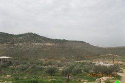 قرار بمصادرة 44 دونم في قرية نحالين – محافظة بيت لحم