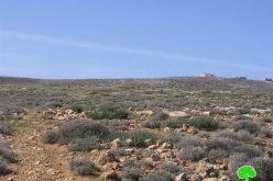 Mitsadut colonists Cultivate Palestinian Lands