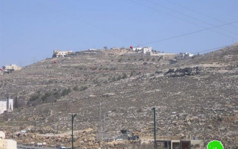 Colonists Plant Palestinian Lands with Forest Trees in Al baq'a and al Idessa – Hebron city