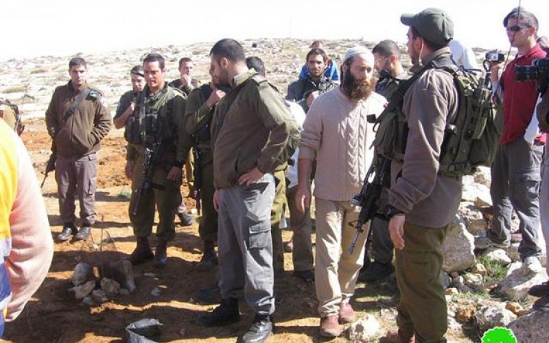 Suseya Colonists Attacks Palestinians While Farming Their Lands in Yatta town  – Hebron Governorate.