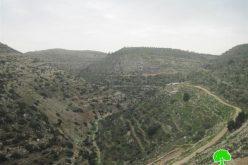 إتلاف عدداً من أشجار الزيتون في قرية بورين