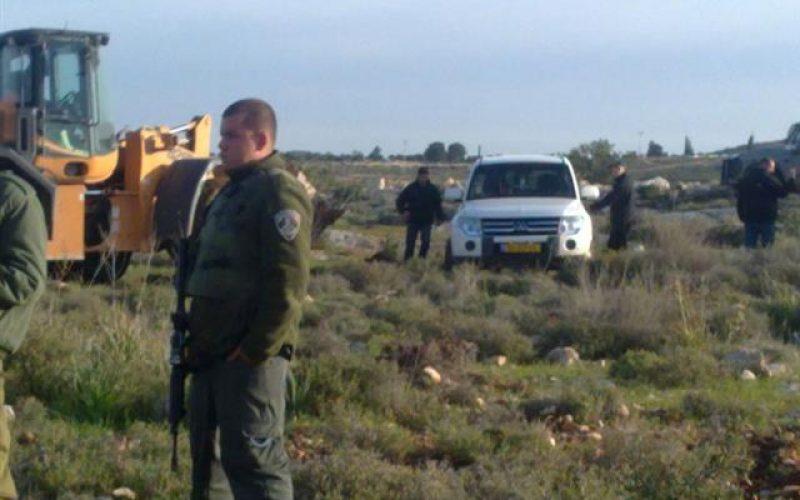 تجريف أراضي واقتلاع مئات الأشجار في بلدة صوريف غرب الخليل