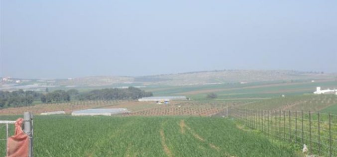 Israel prohibits the extraction of ground water in Kafr Dan Village