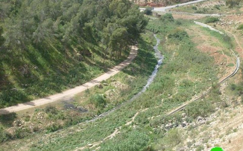 The Colony of Rafafa: The Source of Pollution in Wadi Qana