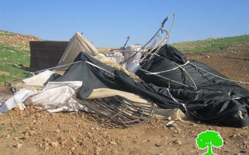 The Israeli Occupation Army demolishes Two Sheds in Jiftlik