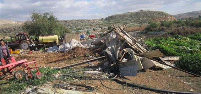 Demolishing a Shack in Beit Dajan