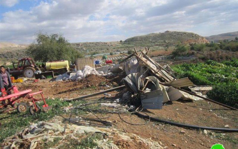 Demolishing a Shack in Beit Dajan