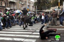 التقرير الشهري حول الانتهاكات الإسرائيلية في مدينة القدس المحتلة خلال شهر آذار 2012