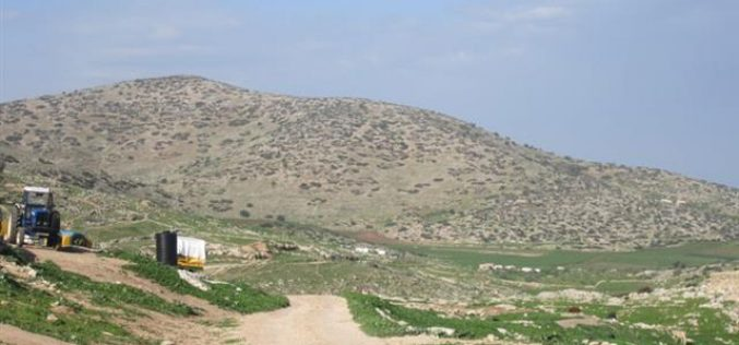 Prohibiting the opening of an agricultural road in Ibzeq