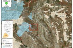 قطع  عشرات أشجار الزيتون في جبل جالس شرق مدينة  الخليل