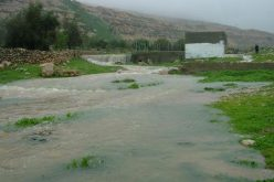 Pumping Sewage towards Nahhalin
