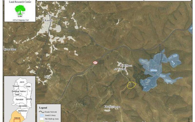 """مستعمرو """" ماعون """" يقطعون 20 شجرة زيتون في منطقة الحُمرا جنوب يطا"""