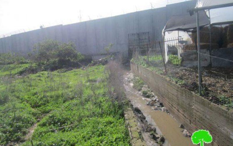 The Segregation Wall Causes floods in Qalqiliyya