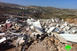 The Israeli Municipality in the Occupied City Demolish a Residence in Beit Hanina