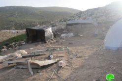 In Less than 24 Hours, the Israeli Occupation Army demolishes more structures in Al Maleh