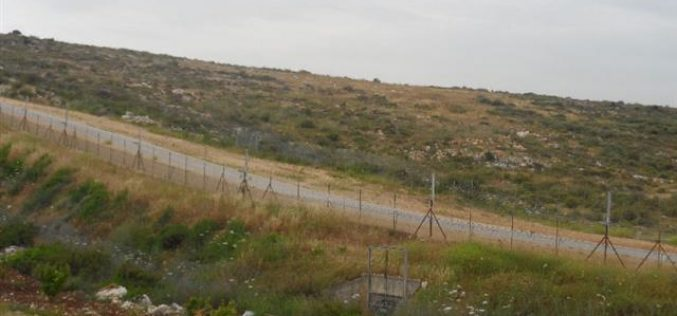 An Israeli advertisement to register unmovable and unregistered Palestinian lands for the favor of  the Israeli Nahala company