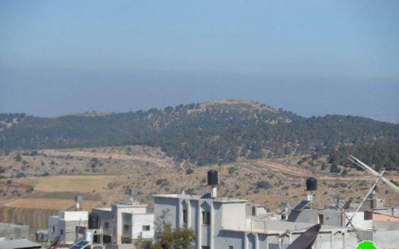 الاحتلال الإسرائيلي يحول الاراضي الزراعية خلف الجدار العنصري في قرية فقوعة إلى مراع للأبقار