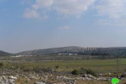 A New Colonial Outpost near Ramallah