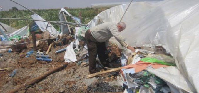 Demolishing Structures in the Jordan Valley