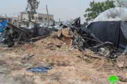 Demolition of Three Industrial Workshops in Jinsafut