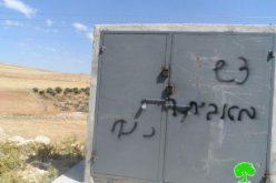 مستعمرون ينفذون مجزرة بحق أشجار زيتون قرية التواني شرق يطا