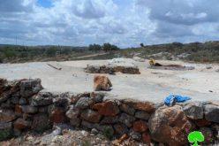 """مستعمرو """" تفوح""""  يقطعون 70 غرسة زيتون في قرية يتما / محافظة نابلس"""