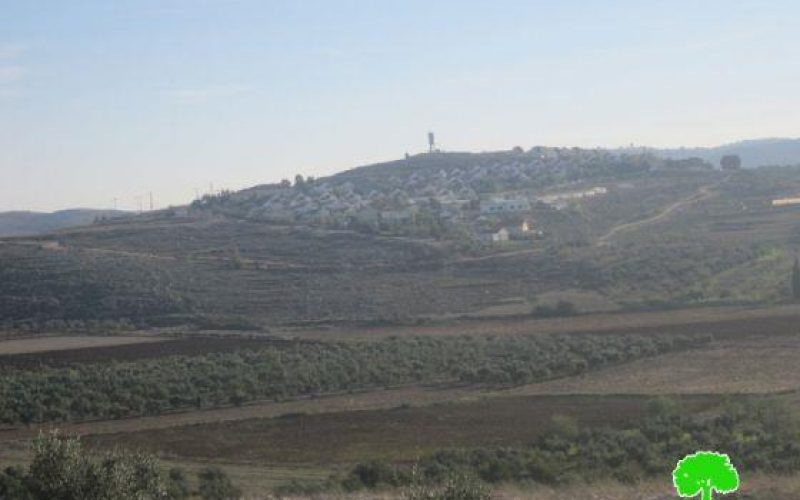 Israeli Confiscation order for 877 dunums of Palestinian lands in Awarta, Beit Furik and Rujib villages – Nablus