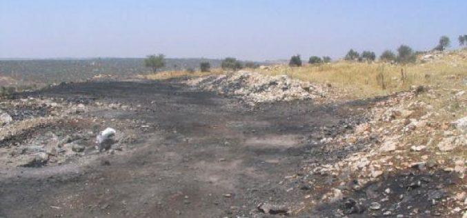 مستعمرون  يحرقون 11 دونماً مزروعة بالقمح في قرية المغير