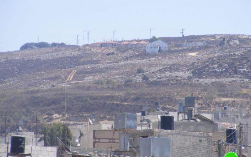 Colonists Burn a 5-donum-plot Land in Nablus