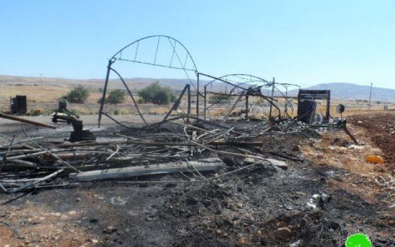 Fanatic Colonizers Burn a Farm in Tobas