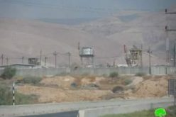 الاحتلال الإسرائيلي يفرض قيوداً على استعمال المراعي لتجمع عرب الرشايدة في منطقة النويعمة / محافظة أريحا