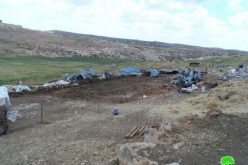 The Israeli occupation demolishes residences and sheds in Khallet Al Karsana