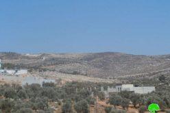 Burning 90 dunums of land in Nablus