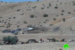إخطار 9 عائلات للرحيل في واد المالح بالأغوار الشمالية / محافظة طوباس