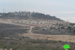 Ravaging 70 dunums for the favor of Kedumim colony at the expense of Palestinian lands