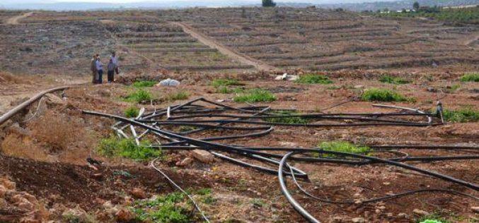 الاحتلال الاسرائيلي يجرف ثمان دونمات زراعية في قرية راس عطية