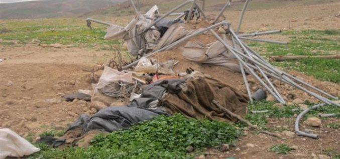 Demolishing three barns for sheep husbandry in Jericho