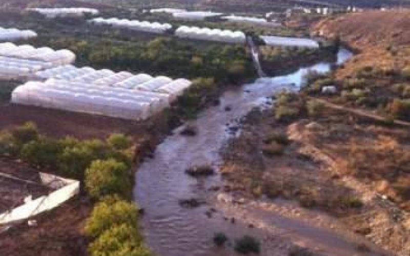 انسداد المصارف المائية على طول الجدار الفاصل يؤدي إلى خسائر فادحة في القطاع الزراعي في محافظة قلقيلية