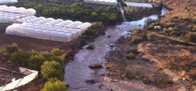Huge losses in the agriculture sector due to clogged water drainages aligning with the segregation wall