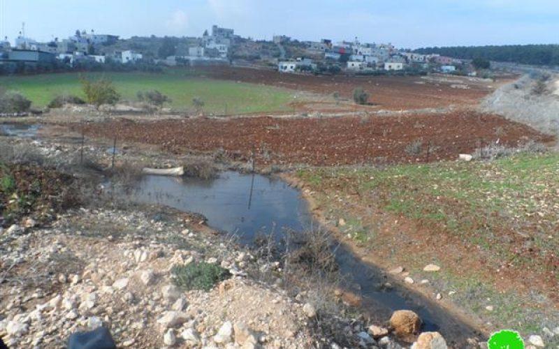 Colony of Meirav pumps sewage into Jalbun lands