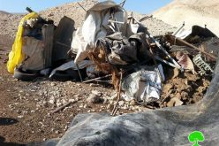 Razing a barn in Al 'Auja