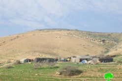 Sending five stop-work and evacuation orders to five Bedouin families