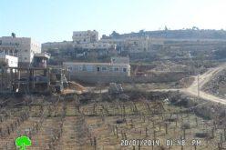 إخطار بوقف العمل و البناء لمنزل في قرية الخضر / محافظة بيت لحم